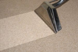 Michigan Carpet Cleaners