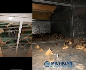 Michigan Air Duct Cleaning (44878 Heydenreich Rd , Clinton Twp MI 48038